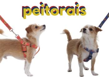Pet - Peitoral